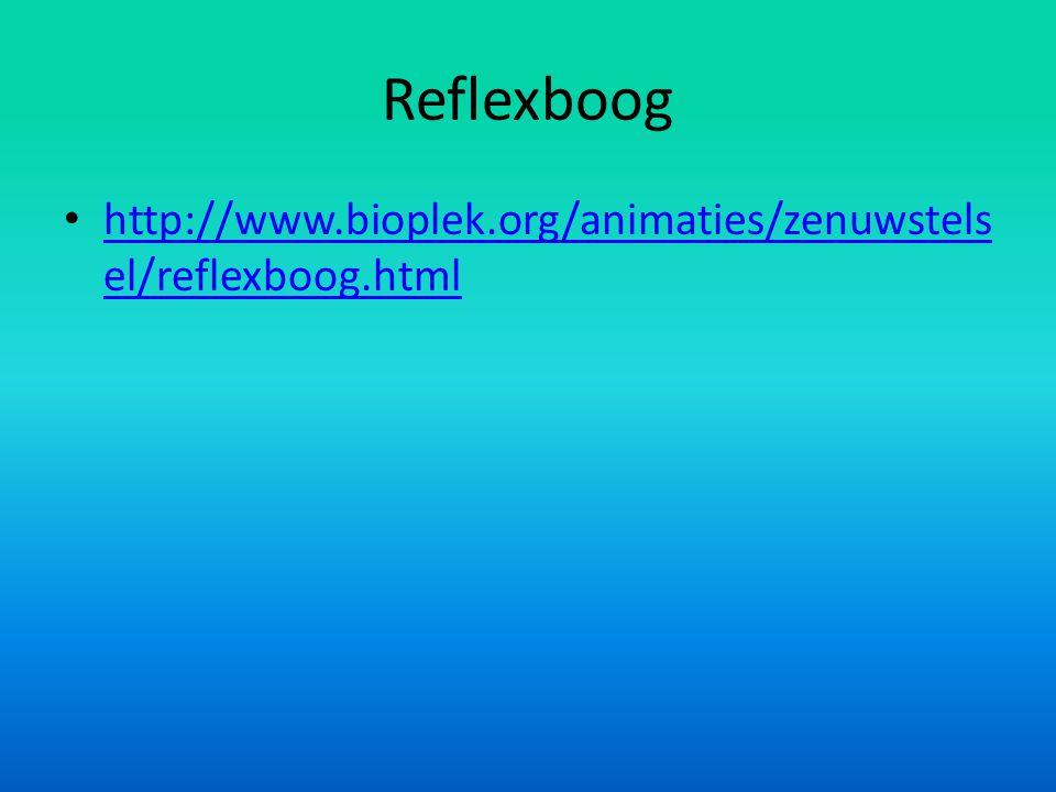 Reflexboog • http://www.bioplek.org/animaties/zenuwstels el/reflexboog.html http://www.bioplek.org/animaties/zenuwstels el/reflexboog.html