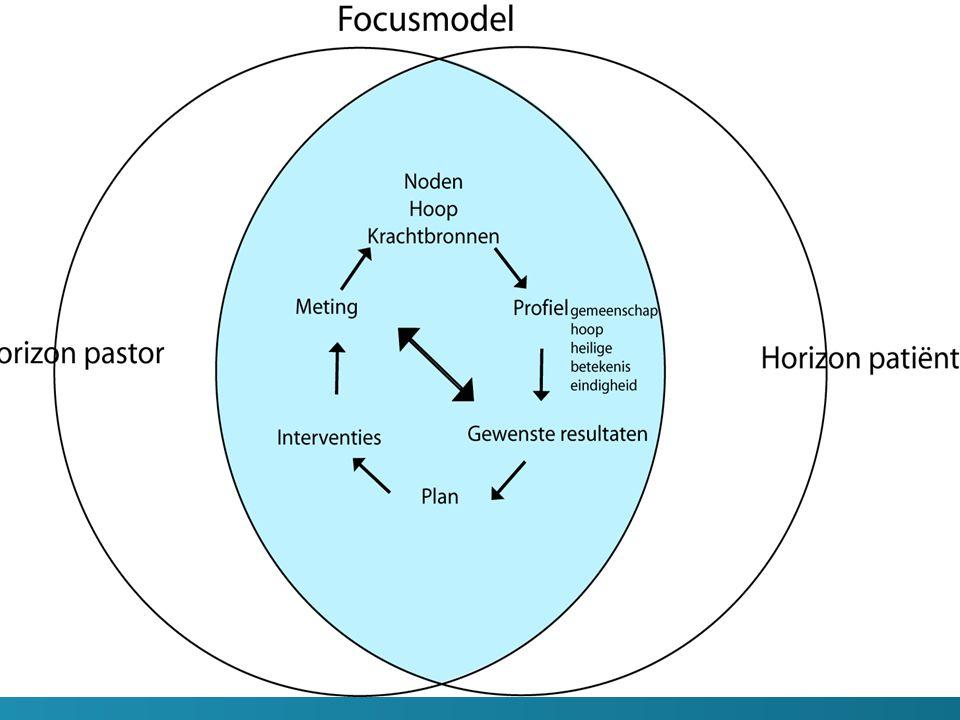 Het focusmodel