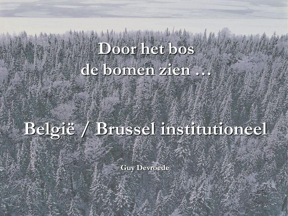 Door het bos de bomen zien … België / Brussel institutioneel Guy Devroede