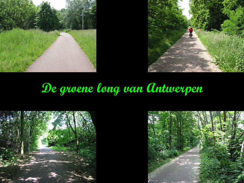 Dit is ook ………… Antwerpen