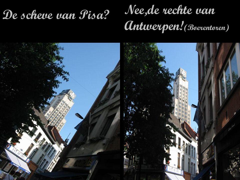 Met Jeje tegen 35 per uur door Antwerpen