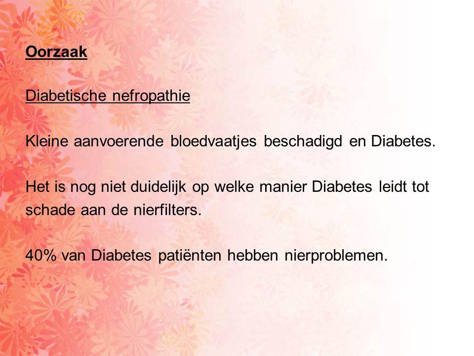 Diabetische nefropathie Kleine aanvoerende bloedvaatjes beschadigd en Diabetes. Het is nog niet duidelijk op welke manier Diabetes leidt tot schade aa
