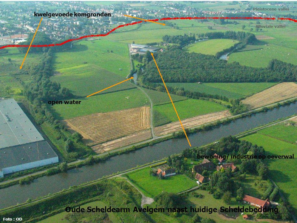 Diepe drainage: kwel verdwijnt uit wortelzone...