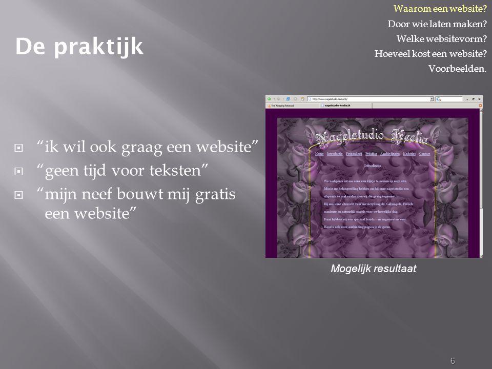  ik wil ook graag een website  geen tijd voor teksten  mijn neef bouwt mij gratis een website 6 De praktijk Waarom een website.