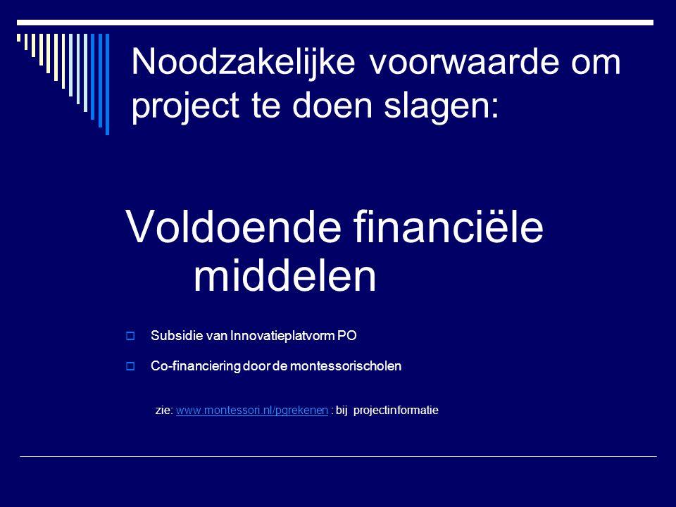 Noodzakelijke voorwaarde om project te doen slagen: Voldoende financiële middelen  Subsidie van Innovatieplatvorm PO  Co-financiering door de montes