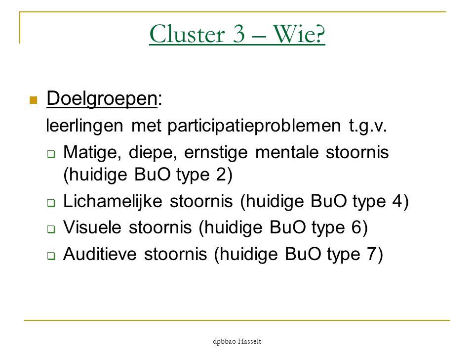 dpbbao Hasselt Cluster 3 – Wie?  Doelgroepen: leerlingen met participatieproblemen t.g.v.  Matige, diepe, ernstige mentale stoornis (huidige BuO typ
