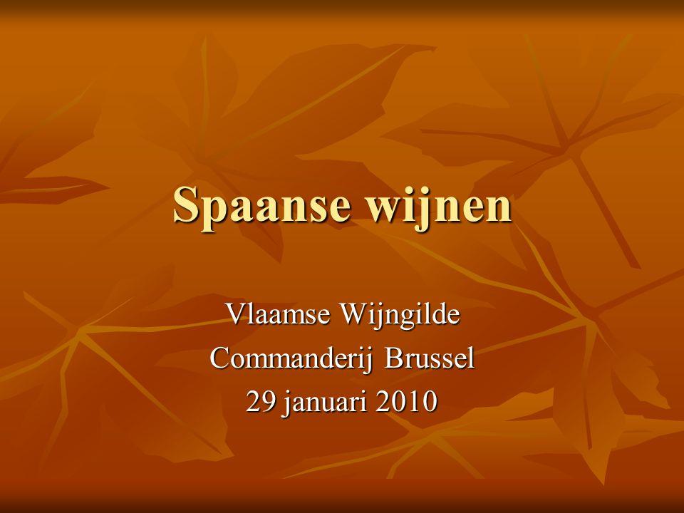Spaanse wijnen Vlaamse Wijngilde Commanderij Brussel 29 januari 2010