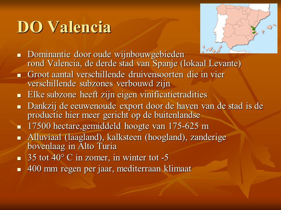 DO Valencia  Dominantie door oude wijnbouwgebieden rond Valencia, de derde stad van Spanje (lokaal Levante)  Groot aantal verschillende druivensoort