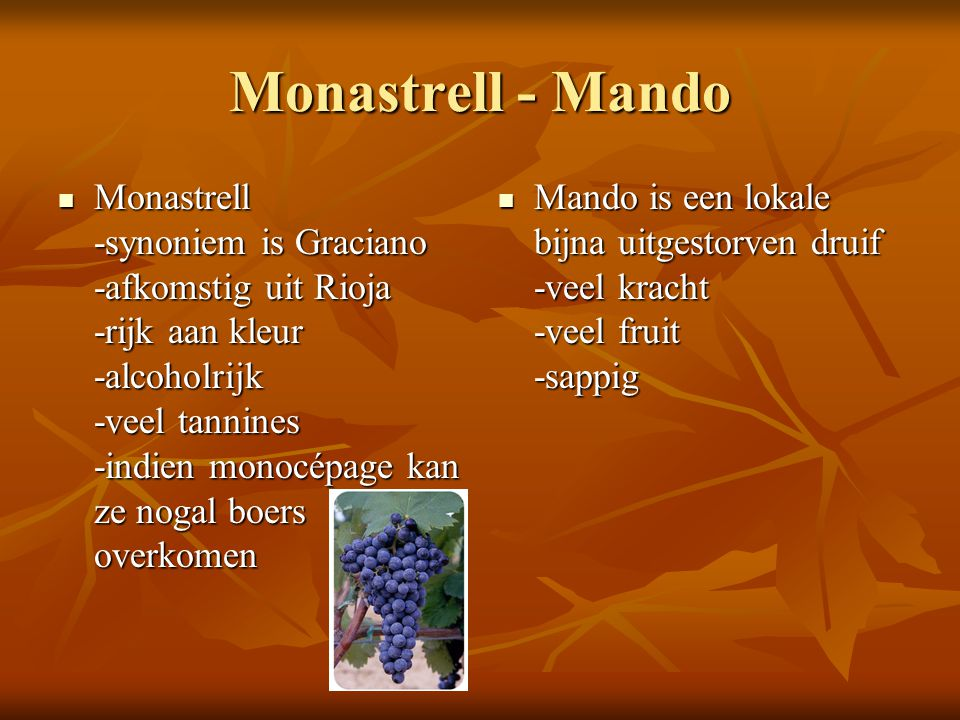 Monastrell - Mando  Monastrell -synoniem is Graciano -afkomstig uit Rioja -rijk aan kleur -alcoholrijk -veel tannines -indien monocépage kan ze nogal