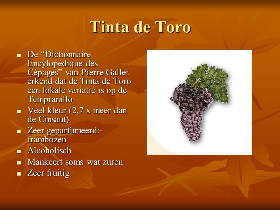 "Tinta de Toro  De ""Dictionnaire Encylopédique des Cépages"" van Pierre Gallet erkend dat de Tinta de Toro een lokale variatie is op de Tempranillo  V"