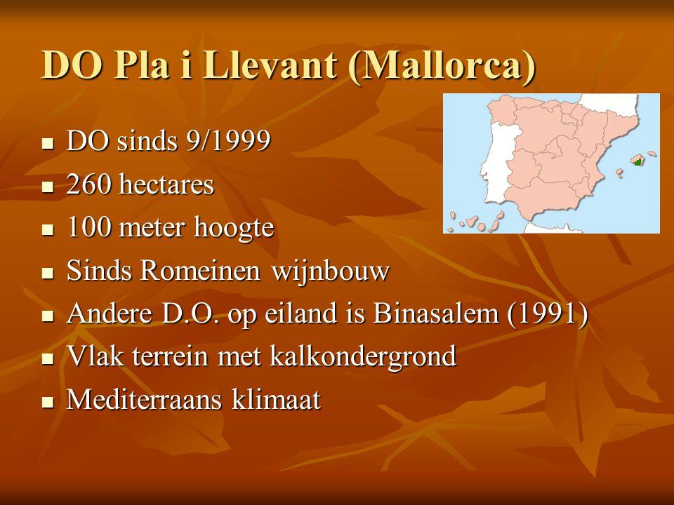 DO Pla i Llevant (Mallorca)  DO sinds 9/1999  260 hectares  100 meter hoogte  Sinds Romeinen wijnbouw  Andere D.O. op eiland is Binasalem (1991)