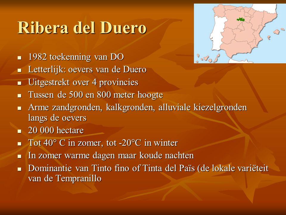 Ribera del Duero  1982 toekenning van DO  Letterlijk: oevers van de Duero  Uitgestrekt over 4 provincies  Tussen de 500 en 800 meter hoogte  Arme