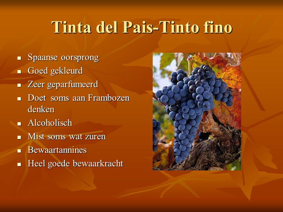 Tinta del Pais-Tinto fino  Spaanse oorsprong  Goed gekleurd  Zeer geparfumeerd  Doet soms aan Frambozen denken  Alcoholisch  Mist soms wat zuren