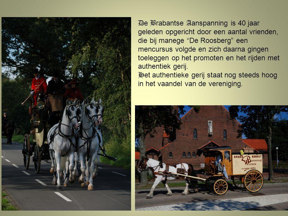 """D e B rabantse A anspanning is 40 jaar geleden opgericht door een aantal vrienden, die bij manege """"De Roosberg"""" een mencursus volgde en zich daarna gi"""