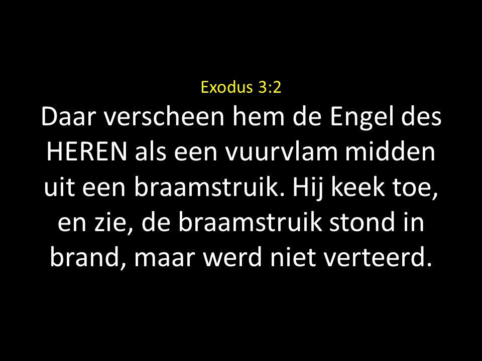 Exodus 3:2 Daar verscheen hem de Engel des HEREN als een vuurvlam midden uit een braamstruik. Hij keek toe, en zie, de braamstruik stond in brand, maa