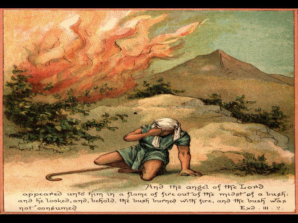 Exodus 3:12 Toen zeide Hij: Ik ben immers met u!