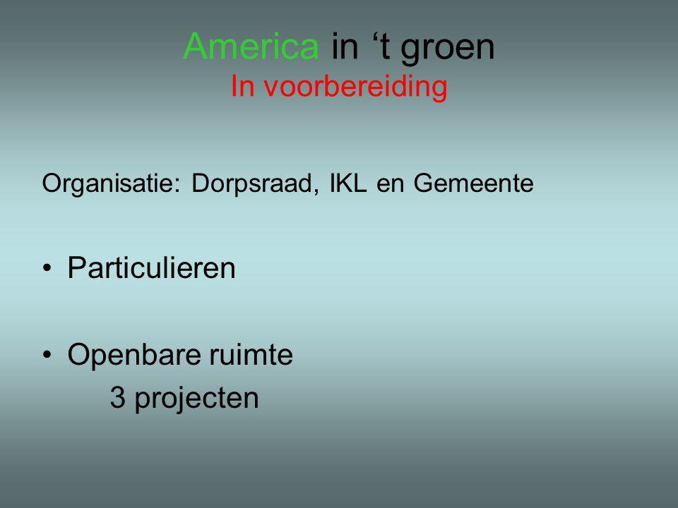 America in 't groen In voorbereiding Organisatie: Dorpsraad, IKL en Gemeente •Particulieren •Openbare ruimte 3 projecten