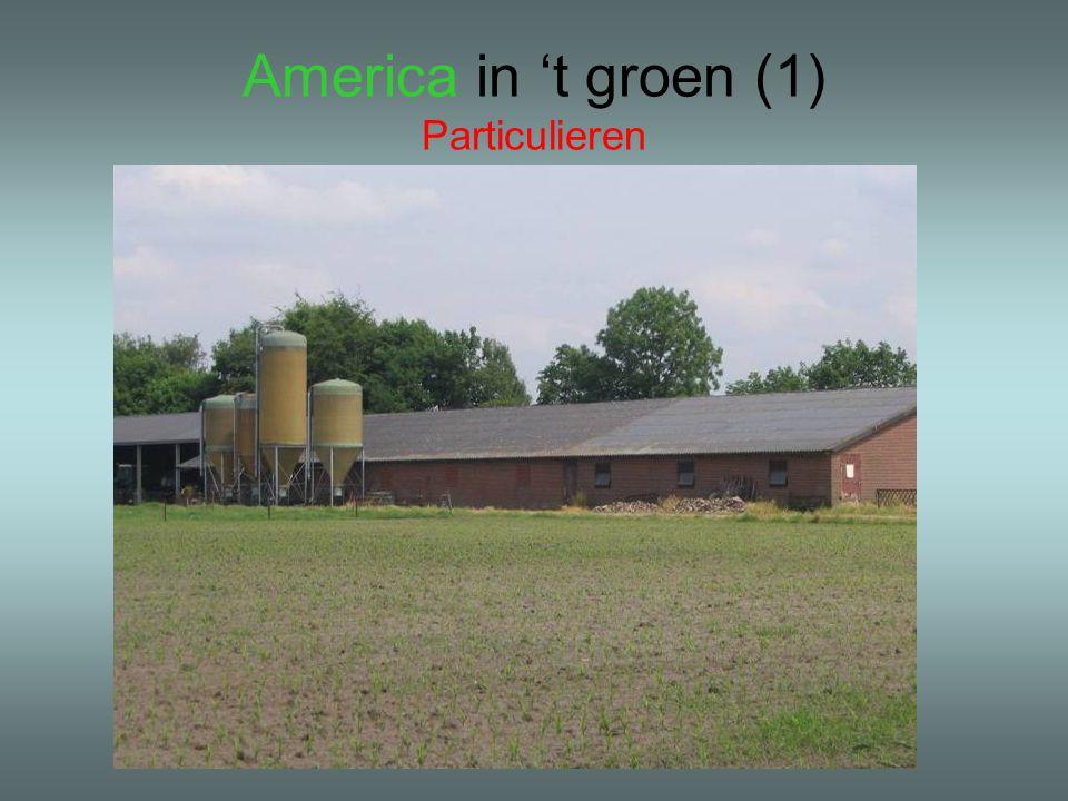 America in 't groen (1) Particulieren