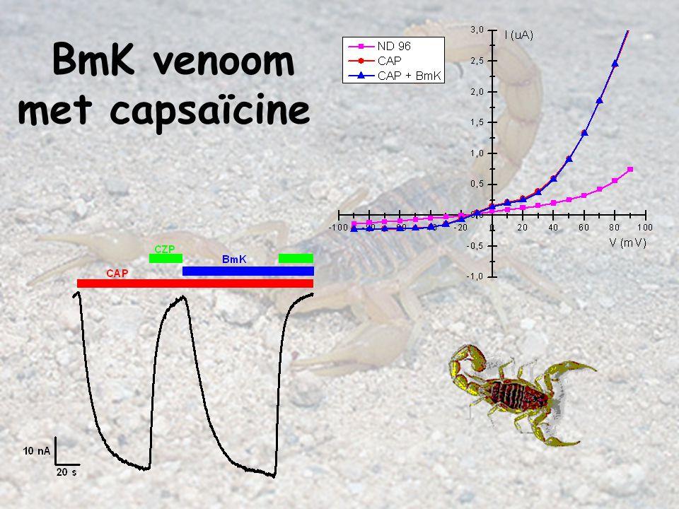 BmK venoom met capsaïcine