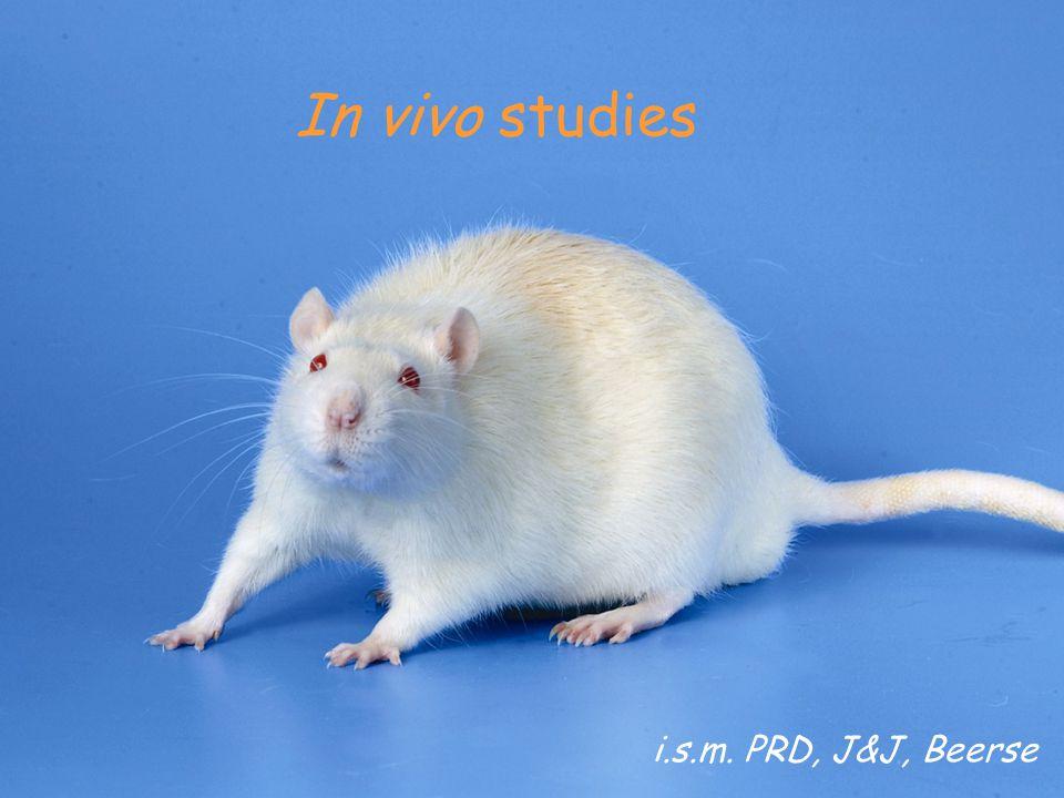 In vivo studies i.s.m. PRD, J&J, Beerse
