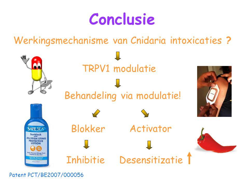 Conclusie Werkingsmechanisme van Cnidaria intoxicaties .