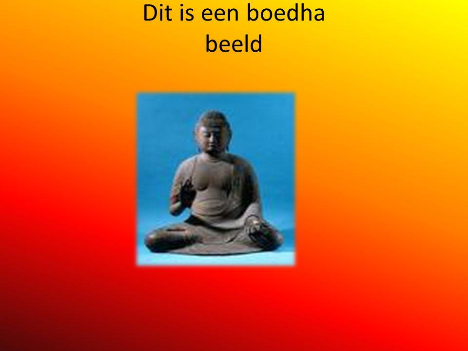 boedha Wij gaan iets vertellen over het boeddhisme