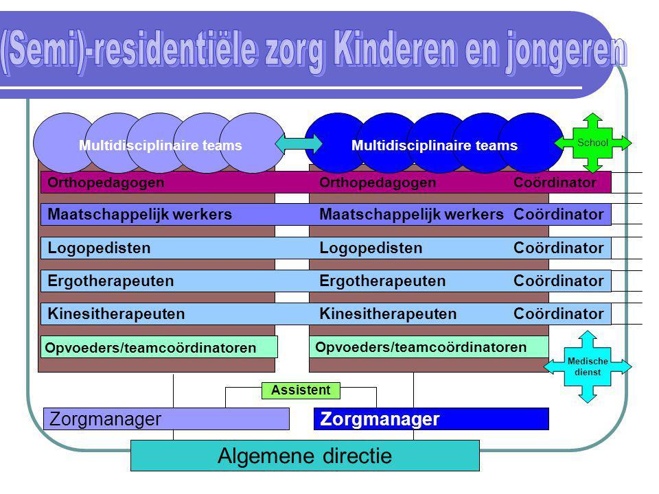Algemene directie Zorgmanager Opvoeders/teamcoördinatoren KinesitherapeutenKinesitherapeutenCoördinator ErgotherapeutenErgotherapeutenCoördinator Logo