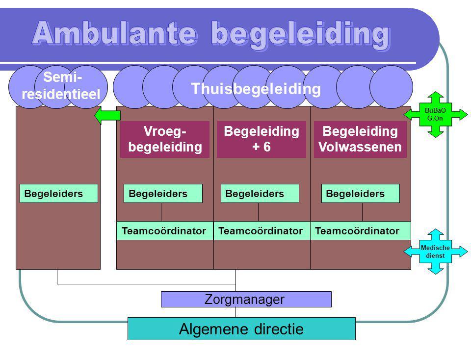 Algemene directie Zorgmanager Medische dienst Semi- residentieel Begeleiders Vroeg- begeleiding Begeleiding + 6 Begeleiding Volwassenen Begeleiders Te