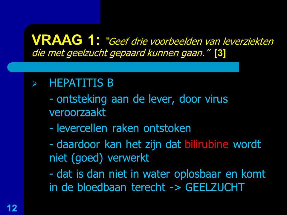 """VRAAG 1: """"Geef drie voorbeelden van leverziekten die met geelzucht gepaard kunnen gaan."""" [3]  HEPATITIS B - ontsteking aan de lever, door virus veroo"""