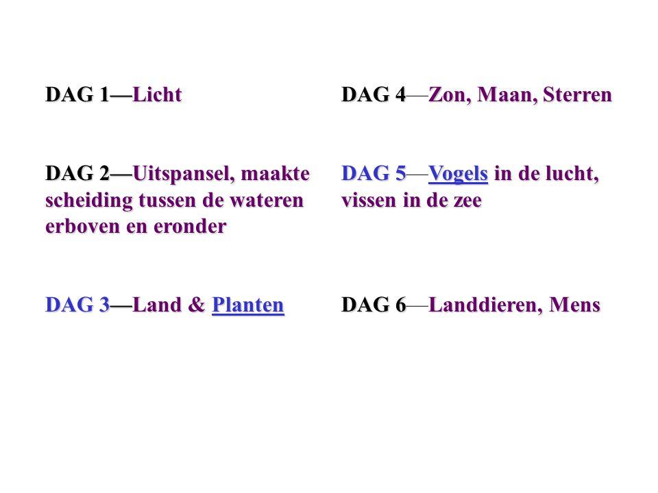 DAG 1—Licht DAG 2—Uitspansel, maakte scheiding tussen de wateren erboven en eronder DAG 3—Land & Planten DAG 4Zon, Maan, Sterren DAG 4—Zon, Maan, Ster
