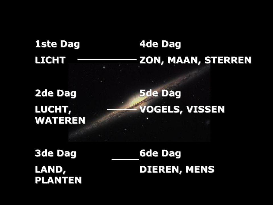 1ste Dag LICHT 2de Dag LUCHT, WATEREN 3de Dag LAND, PLANTEN 4de Dag ZON, MAAN, STERREN 5de Dag VOGELS, VISSEN 6de Dag DIEREN, MENS