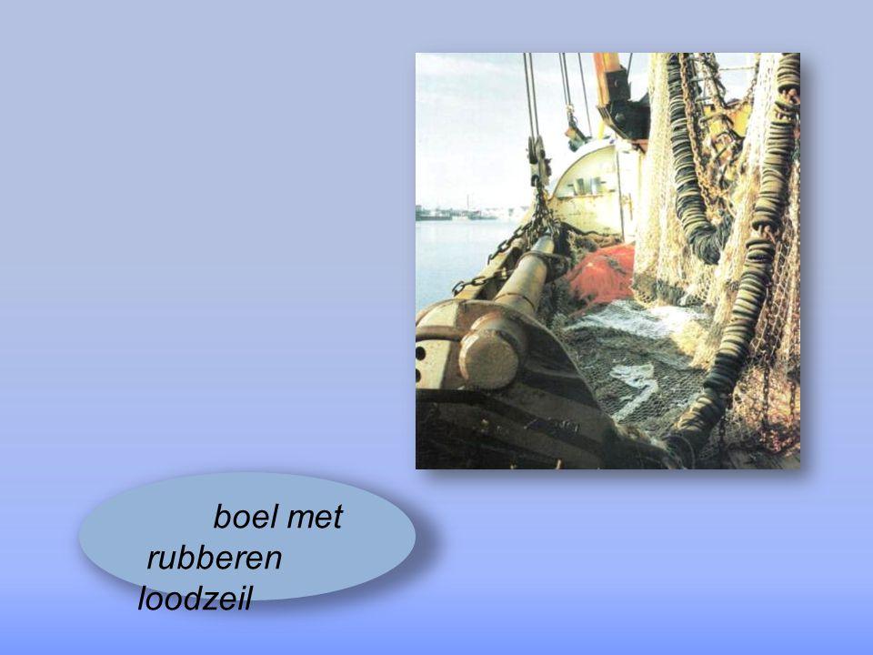het bemanningsprobleem in de visserij raakt maar niet opgelost
