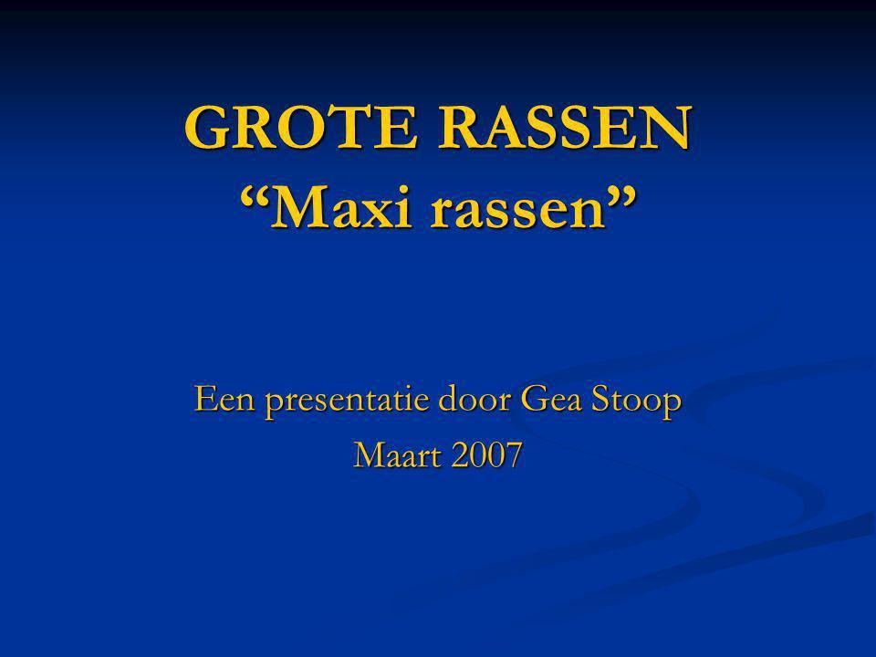 """GROTE RASSEN """"Maxi rassen"""" Een presentatie door Gea Stoop Maart 2007"""