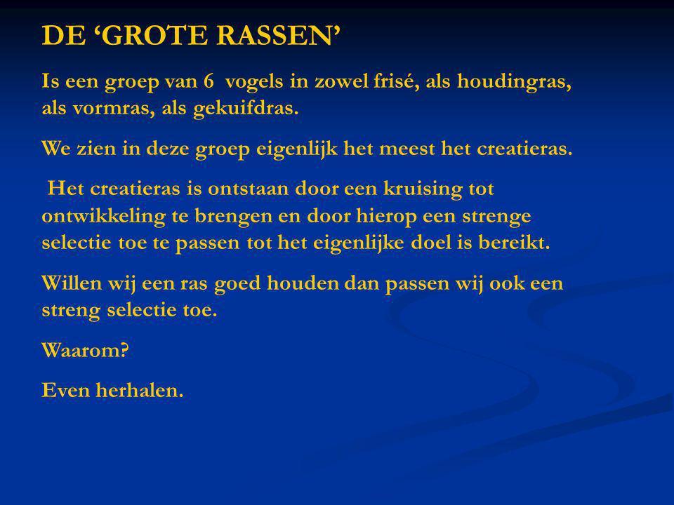 DE 'GROTE RASSEN' Is een groep van 6 vogels in zowel frisé, als houdingras, als vormras, als gekuifdras. We zien in deze groep eigenlijk het meest het