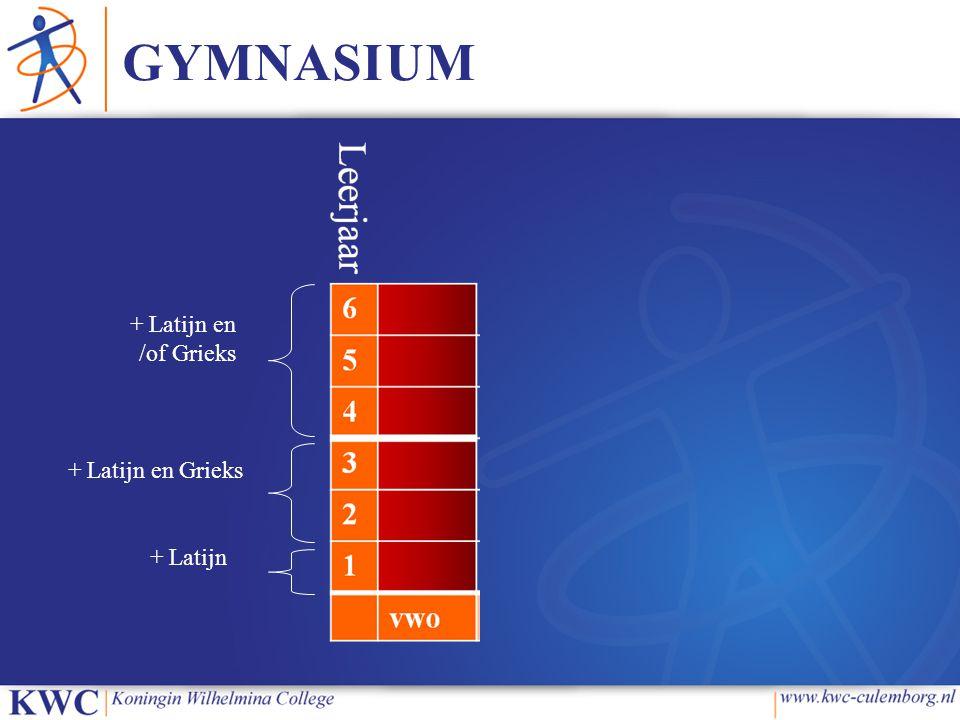 GYMNASIUM + Latijn + Latijn en Grieks + Latijn en /of Grieks