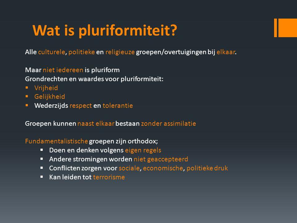 Wat is pluriformiteit? Alle culturele, politieke en religieuze groepen/overtuigingen bij elkaar. Maar niet iedereen is pluriform Grondrechten en waard