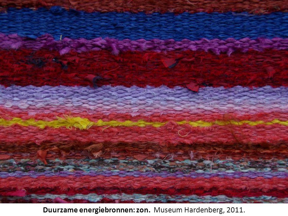 Duurzame energiebronnen: zon. Museum Hardenberg, 2011.