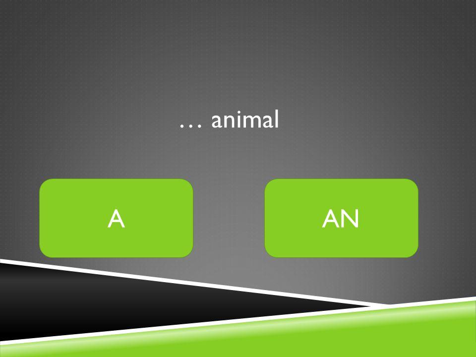 … animal AAN