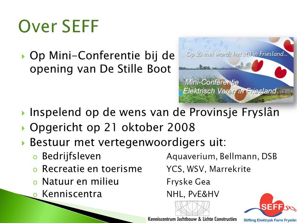  Op Mini-Conferentie bij de opening van De Stille Boot  Inspelend op de wens van de Provinsje Fryslân  Opgericht op 21 oktober 2008  Bestuur met v