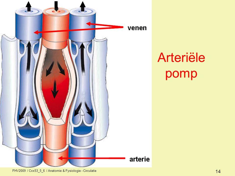 FHV2009 / Cxx53_5_6 / Anatomie & Fysiologie - Circulatie 14 Arteriële pomp