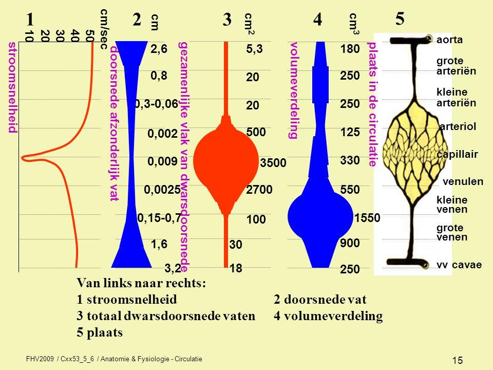 FHV2009 / Cxx53_5_6 / Anatomie & Fysiologie - Circulatie 15 Van links naar rechts: 1 stroomsnelheid 2 doorsnede vat 3 totaal dwarsdoorsnede vaten 4 vo