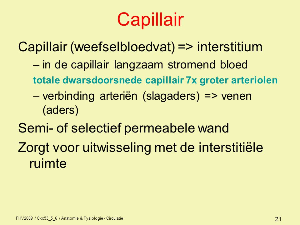 FHV2009 / Cxx53_5_6 / Anatomie & Fysiologie - Circulatie 21 Capillair Capillair (weefselbloedvat) => interstitium –in de capillair langzaam stromend b