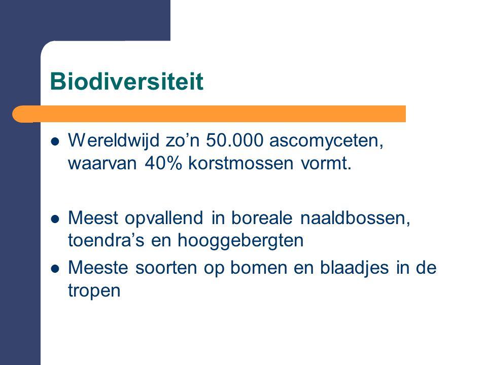 Biodiversiteit  Wereldwijd zo'n 50.000 ascomyceten, waarvan 40% korstmossen vormt.