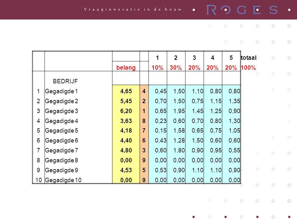 12345totaal belang 10%30%20% 100% BEDRIJF 1Gegadigde 14,6540,451,501,100,80 2Gegadigde 25,4520,701,500,751,151,35 3Gegadigde 36,2010,651,951,451,250,9