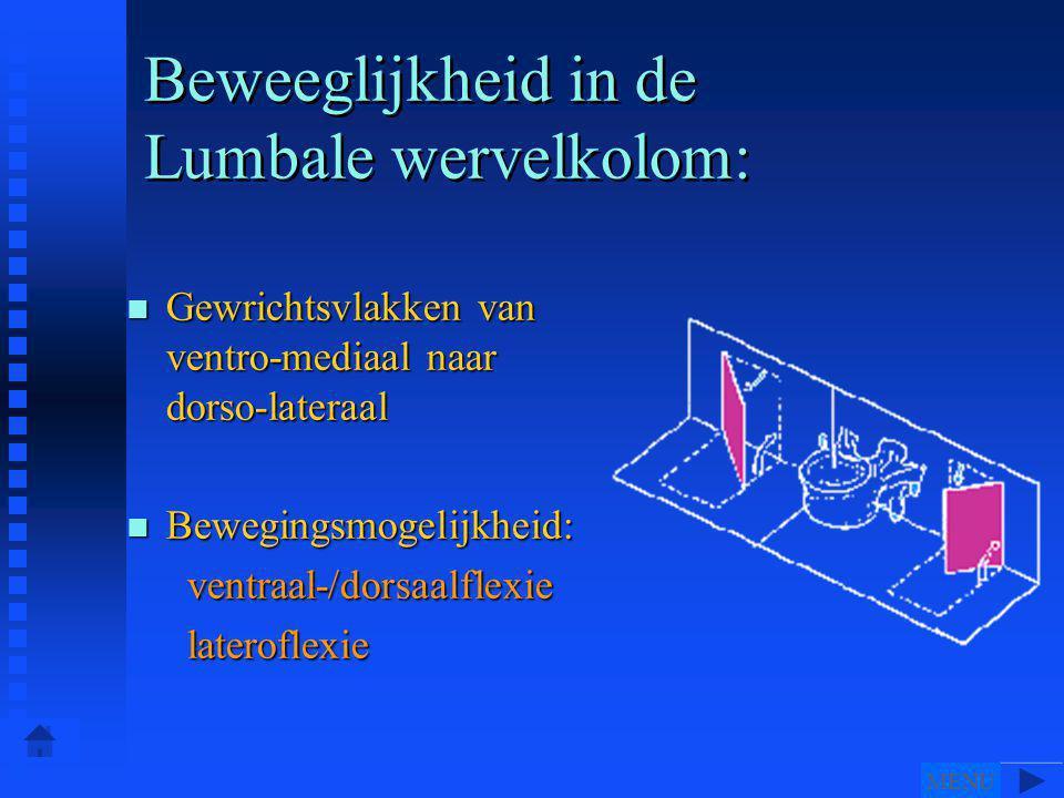 n Gewrichtsvlakken van ventro-mediaal naar dorso-lateraal n Bewegingsmogelijkheid: ventraal-/dorsaalflexie ventraal-/dorsaalflexie lateroflexie lateroflexie Beweeglijkheid in de Lumbale wervelkolom: MENU