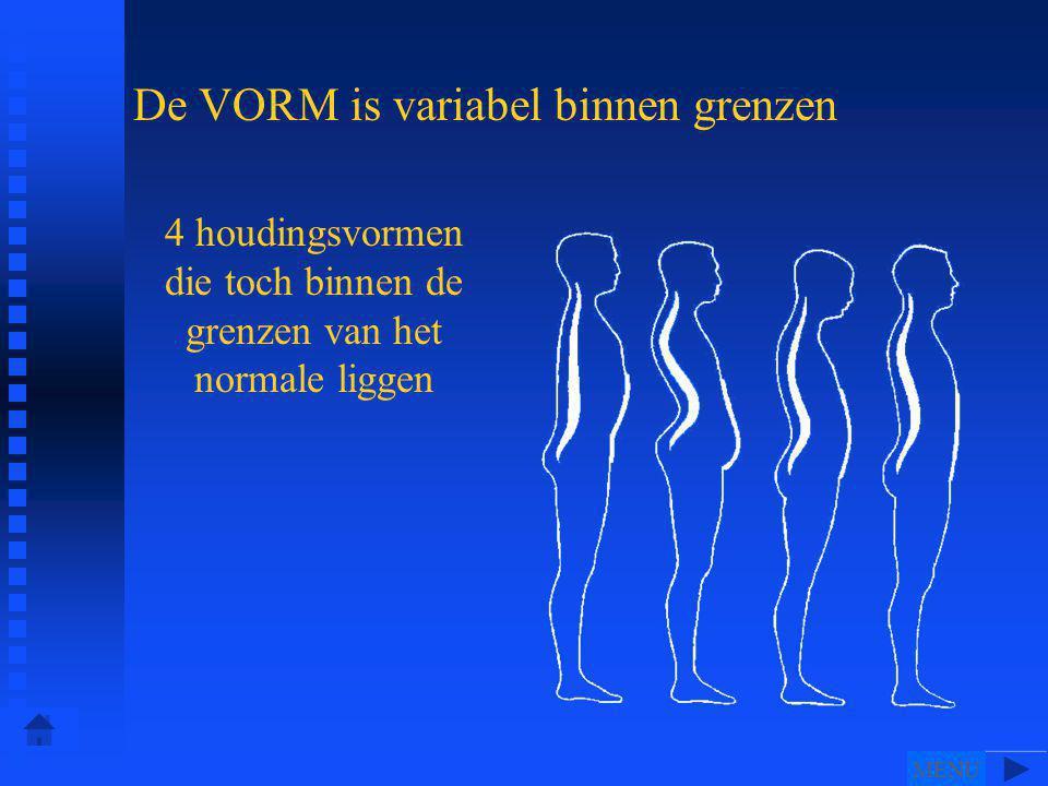 De VORM is variabel binnen grenzen 4 houdingsvormen die toch binnen de grenzen van het normale liggen MENU