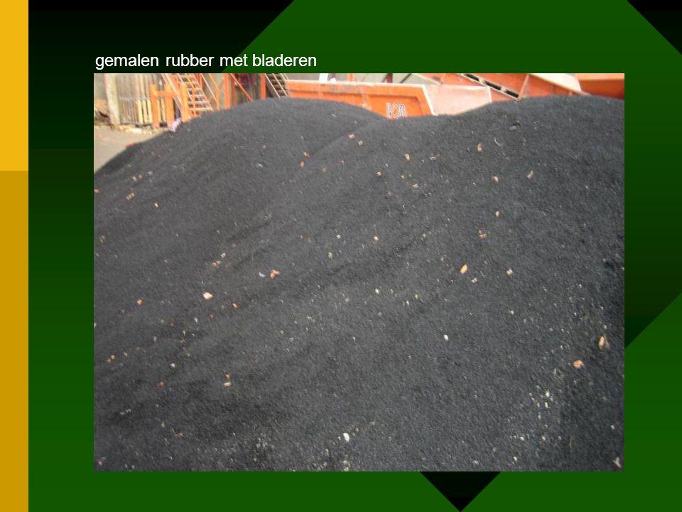 gemalen rubber met bladeren