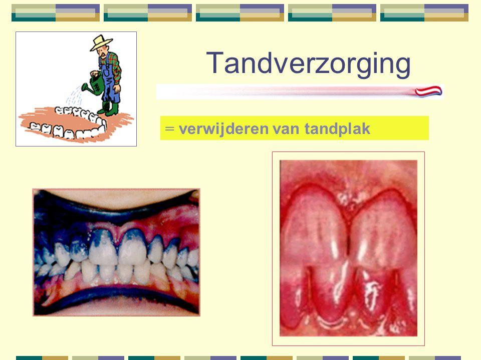 Tandverzorging = verwijderen van tandplak