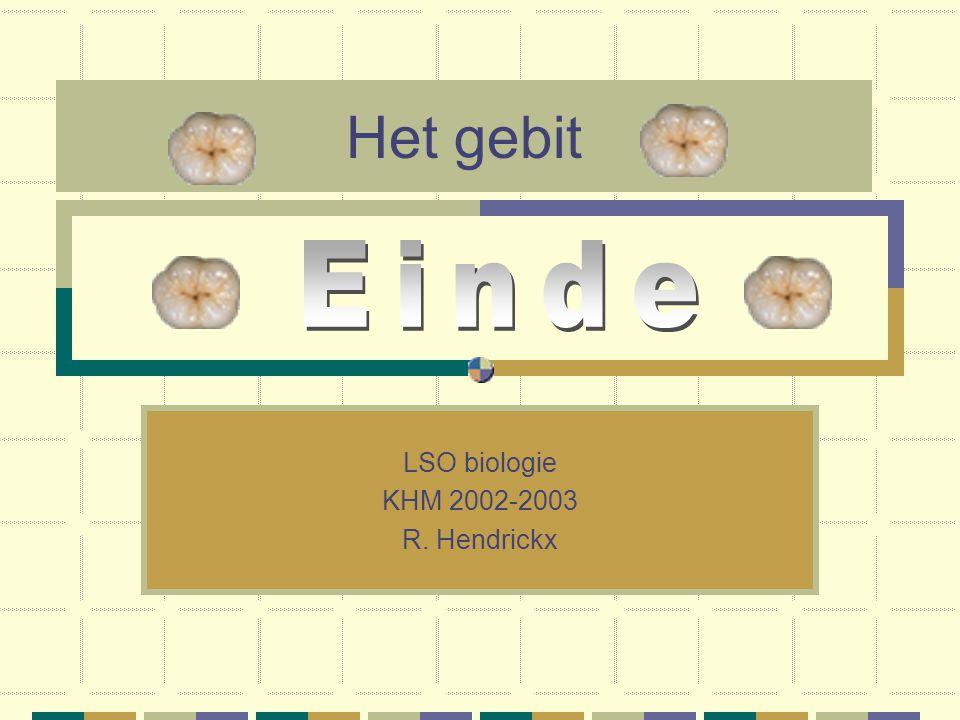 Het gebit LSO biologie KHM 2002-2003 R. Hendrickx