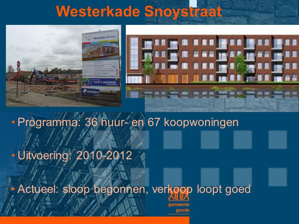 Westerkade Snoystraat •Programma: 36 huur- en 67 koopwoningen •Uitvoering: 2010-2012 •Actueel: sloop begonnen, verkoop loopt goed